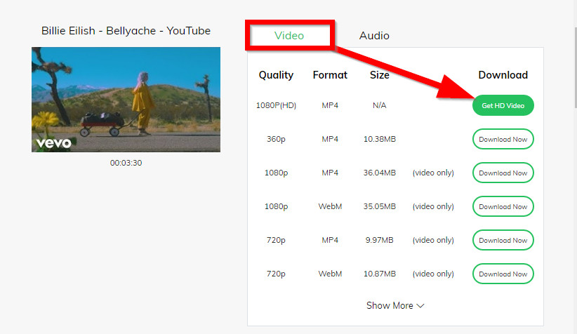 How to Convert Online Videos to MP4 - Select Video Format and Start Converting Online Video